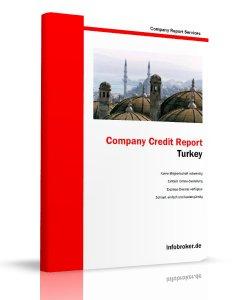 Turkey Company Report